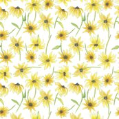 Rsunflowers_cards_shop_thumb