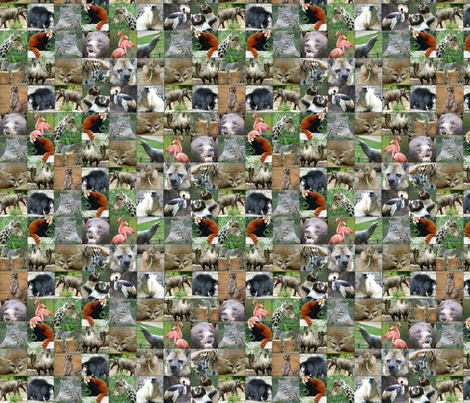 Zoo Montage fabric by ravynscache on Spoonflower - custom fabric