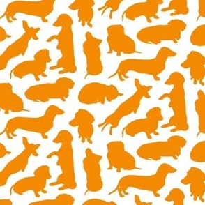Dachshund Party Orange