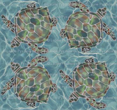 Caribbean Sea Turtles