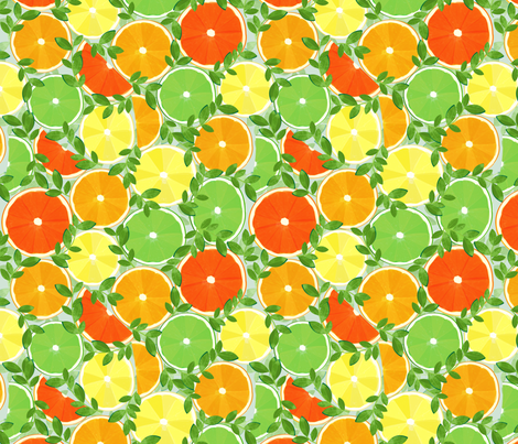 A Slice of Citrus fabric by wildnotions on Spoonflower - custom fabric