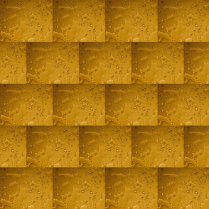 After the Rain :: Bricks of Gold