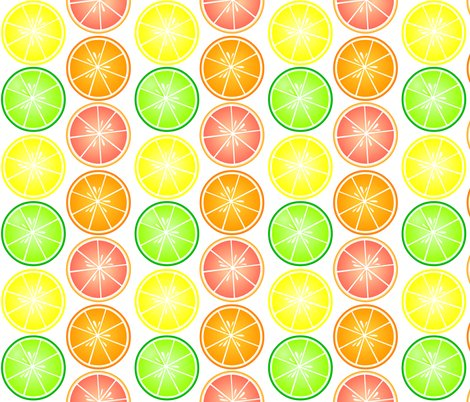Rrcitrus_pattern_shop_preview