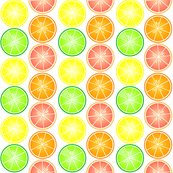 Rrcitrus_pattern_shop_thumb