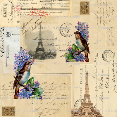 Paris Vinatge Bird and Lilacs