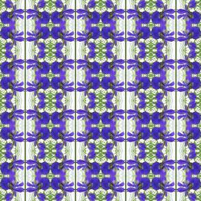 blue_flag_stripe_plain