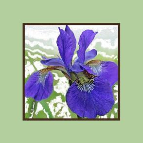 iris_centered_green