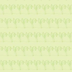 Spring Bud (green)