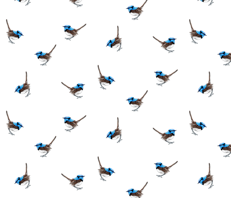 Blue Wren Ditsy fabric by thistleandfox on Spoonflower - custom fabric