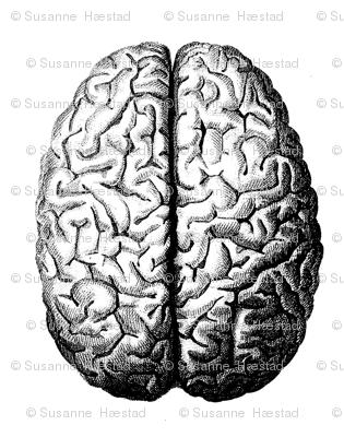 big_brain