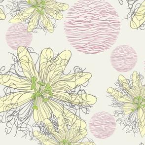 Passiflora_copyright_Ballistic_Owl_june_2013_2