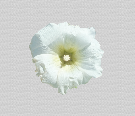 Hollyhock on Light Gray fabric by anniedeb on Spoonflower - custom fabric
