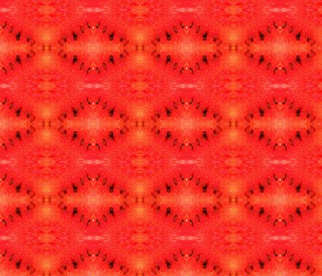 Juicy Watermellon Picnic fabric by disneymamom on Spoonflower - custom fabric