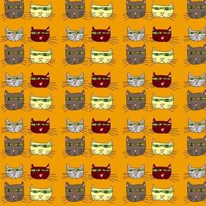 Gatitos and Cats