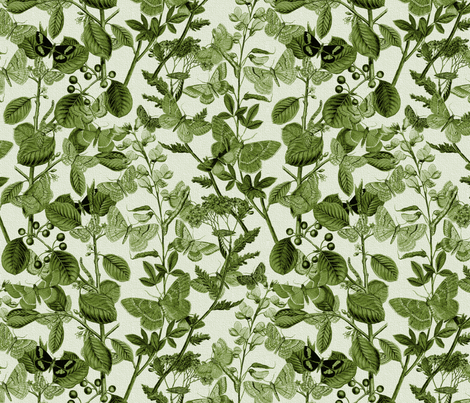 In The Butterflies' Garden ~ Sage fabric by peacoquettedesigns on Spoonflower - custom fabric