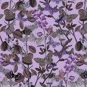 Rbutterflies_twilight_shop_thumb