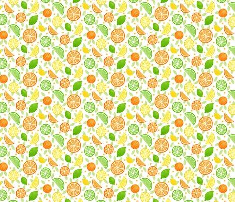 Rrrrcitrus_fruits_3_shop_preview