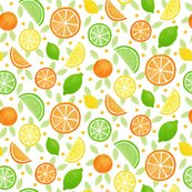 Rrrrcitrus_fruits_3_shop_thumb