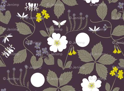 Midsummer Night's Dream Botanical