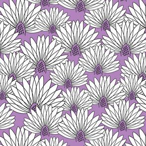 flowers on violet