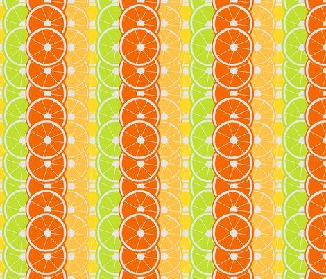 Citrus-slices_shop_preview