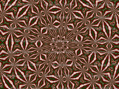 Kaleidescope 0824 k1 k1 a red