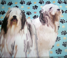 Rbearded_collies_and_paw_prints_comment_316096_thumb