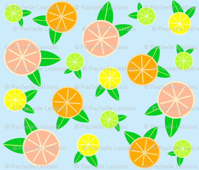 Rcitrus_cross_section_preview