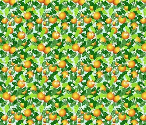 Citrus_fruit_fixed_ed_shop_preview