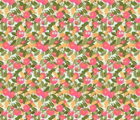 Citrus_fruit_fixed_pink_fruit_shop_preview