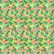 Citrus_leaves_new_leaves_sky_shop_thumb