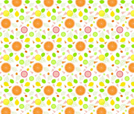 Citrus Slices Illustrator Version fabric by vinpauld on Spoonflower - custom fabric