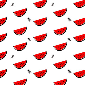 watermelon_multiple_with_ants