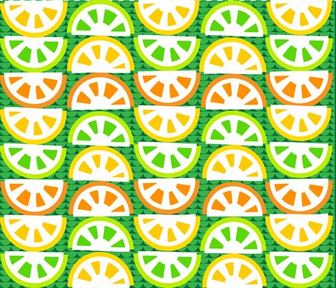 SOO_BLOO_CITRUS_FIVE-C-1-01 fabric by soobloo on Spoonflower - custom fabric