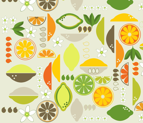 Citrus Fruits deco fabric by mariskadesign on Spoonflower - custom fabric