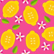 My Sweet Citrus