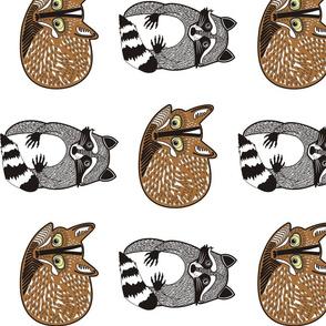 raccoon_fox_pattern