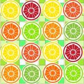 Rrsoobloo_lemons_etc_one-1-01_shop_thumb