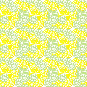 Lemon_Limes_Slices