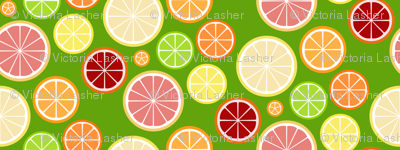 citrus slices - on green