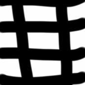 Black & White checks
