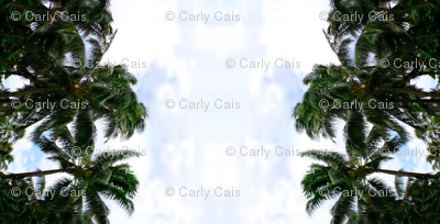 Nature // Breezy Tropical Palm Trees Photorealistic Print