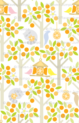 Birds and Oranges