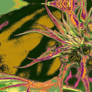 image sunflower bud-ch