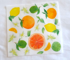 Rrcitrus_fabric_150_comment_404802_thumb
