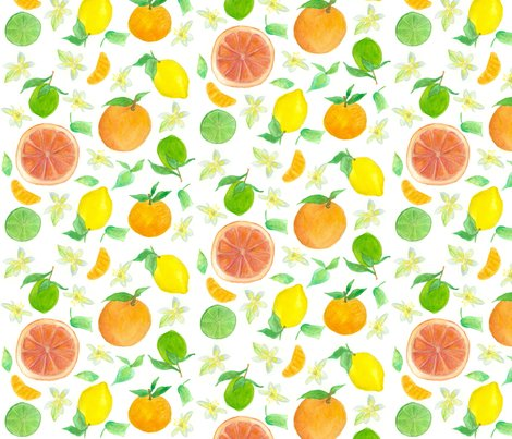 Rrcitrus_fabric_150_shop_preview