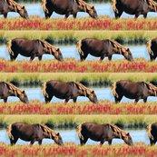 Rwild_pony_shop_thumb