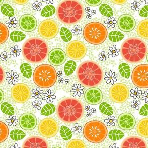 CIT-wmb_Citrus_Sweetness_12in