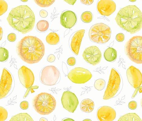 Rcitrusfruits1_shop_preview