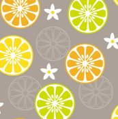 Rrorange-orange-lemon-lime_shop_thumb
